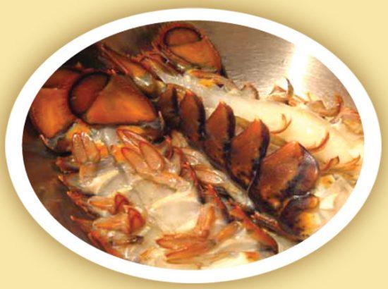 المطاعم البحرية للأسماك
