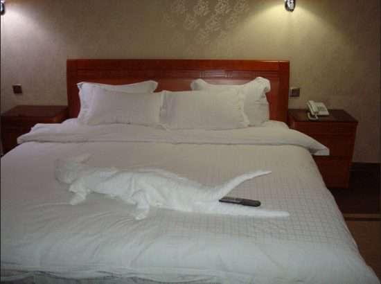 فندق ومطعم المروج