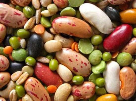 مجموعة الهليس – مواد غذائية